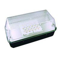 LED - mini wall pack - clear lens - black - 15 watt - 4100 kelvin - 90-250v - exceptional life
